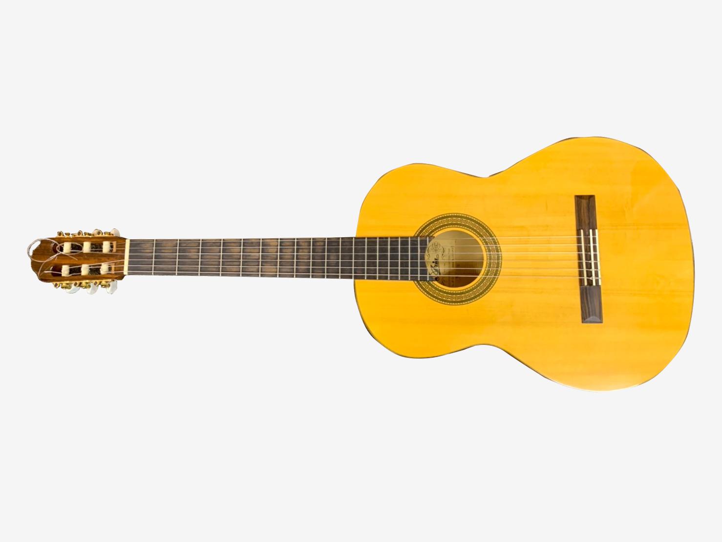 フラメンコギター A-50F(ARIA)